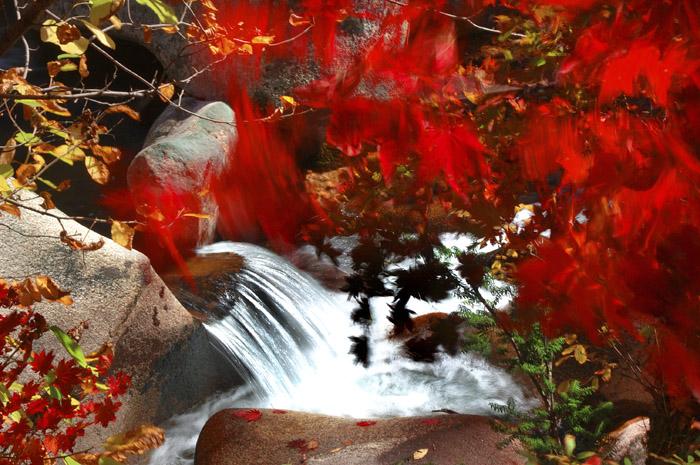 【音画欣赏】水乡歌声惹人醉 香山红叶红满天 - 长城 - 长城的博客http://jsxhscc.